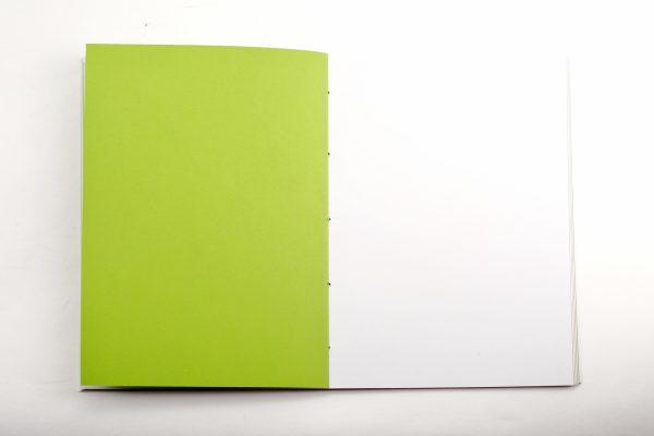papier vert du carnet Entre-temps