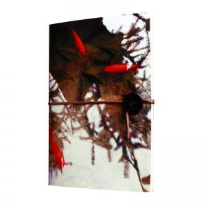 Entre voyage et familiarité des poissons rouges en dehors d'un bocal. Une invitation au voyage en bonne et due forme
