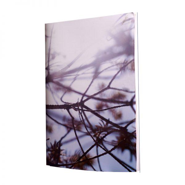 laisse toi bercer par le son de ses pages sous le vent telles des branches de pin et sens-toi libre de créer en toute liberté