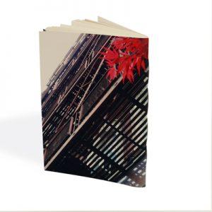 verso du carnet brabra avec les escaliers de secours typique de la ville de New York