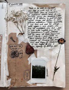 écriture collage herbier et photographie