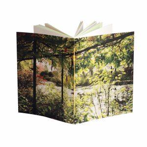 le carnet ruth est une invitation à la botanique et à la peinture