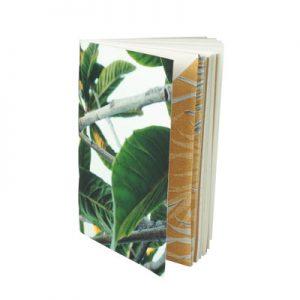 IIl est idéale pour un carnet de remède et de plantes médicinales